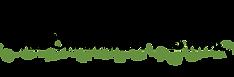 California Irish Festival Logo