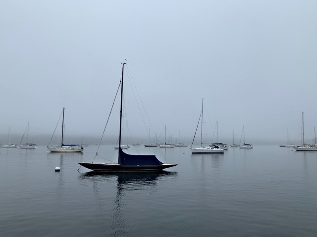 Foggy morning over Oyster Bay.jpeg