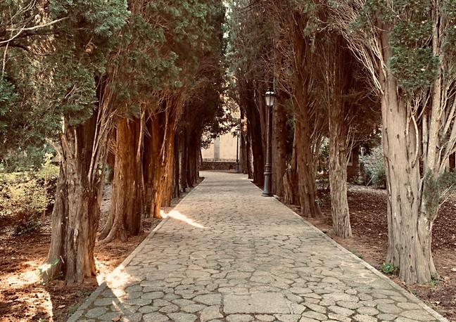 Valldemossa - Palma de Mallorca