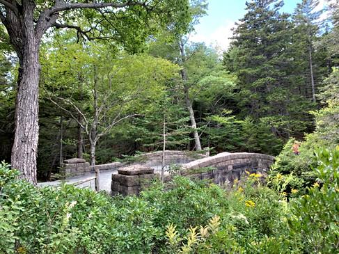 Hadlock Brook Bridge, Acadia National Park