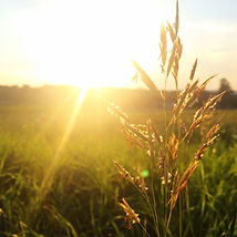 lever du soleil