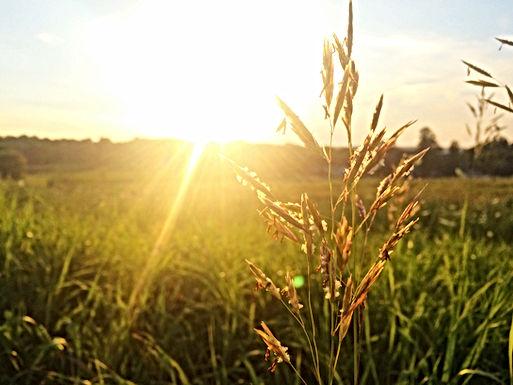 WEERBERICHT: Zaterdag wordt minst mooie dag, daarna opnieuw zonnig en warm