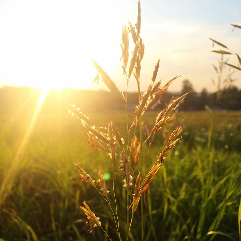Sunrise Yoga Brunch @ Gara Rock - Sunday 21st July (1)
