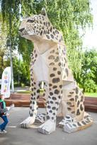 """Эко-фестиваль """"День Леопарда"""""""
