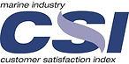 CSI-Award-logo.jpg