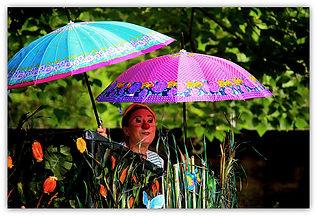 parapluies_800.jpg