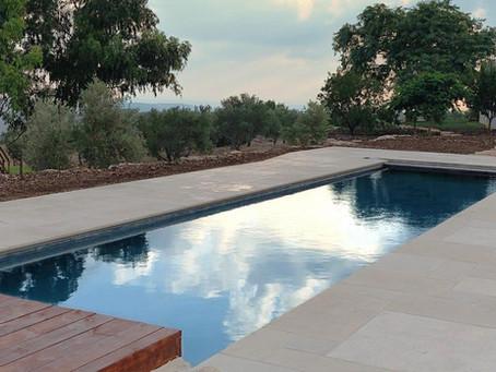 בריכות שחייה טבעיות לבית: הדור הבא של בריכות השחייה