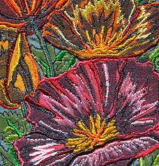 `Californian poppy tight crop Square.JPG