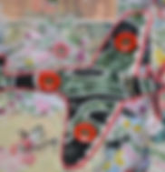 Plane Camouflage.JPG