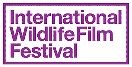 IWFF_logo_purple.png