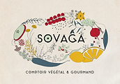 sovaga_logo_couleur_fond-e1562663617512.