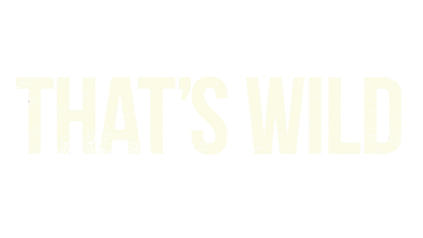 Title white.png