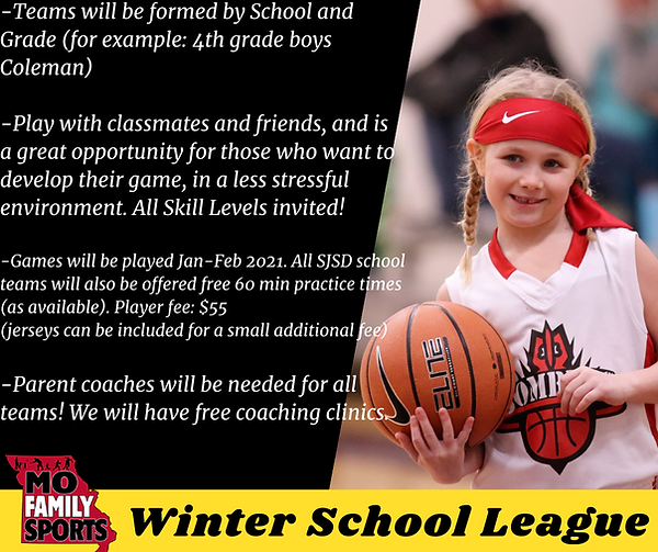 Winter School League.png
