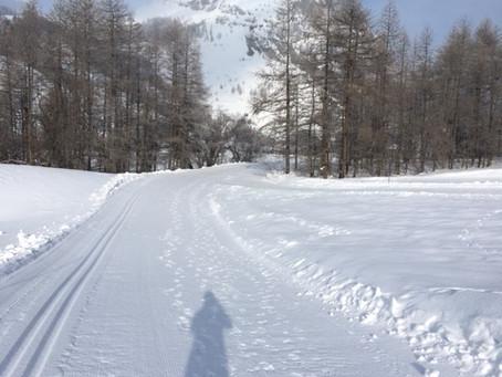 Beautiful morning trail run in cold but stunning scenery.