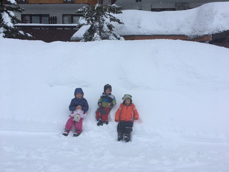 5/5 avalanche rating again this winter!