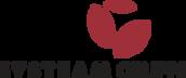 SYSTEAM Gruppe Logo