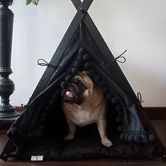 Boho black tent 2.jpg
