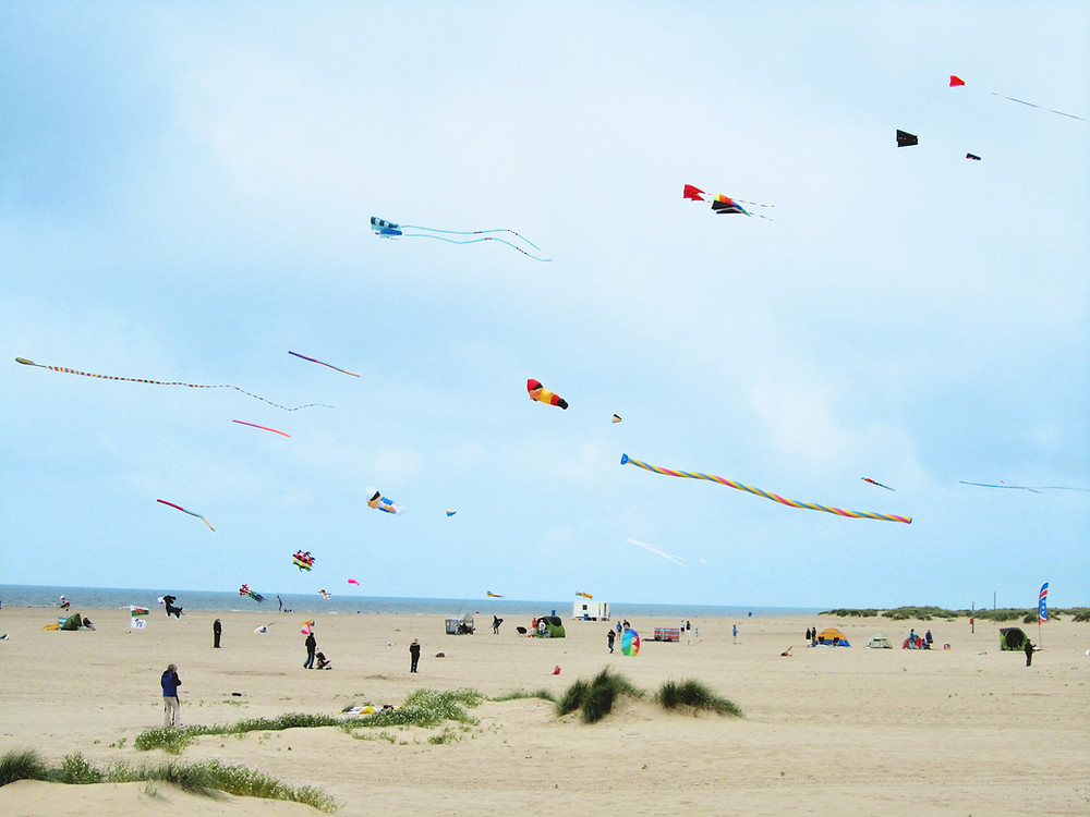 Kites on a beach