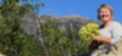 Eva-vattenfall.jpg