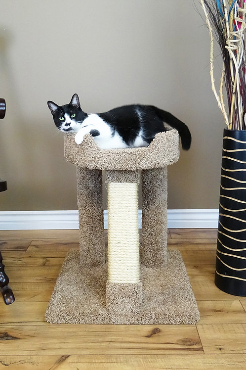 Premier Elevated Cat Bed