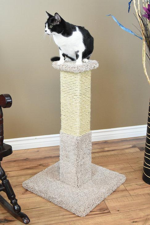 Premier Cat Post