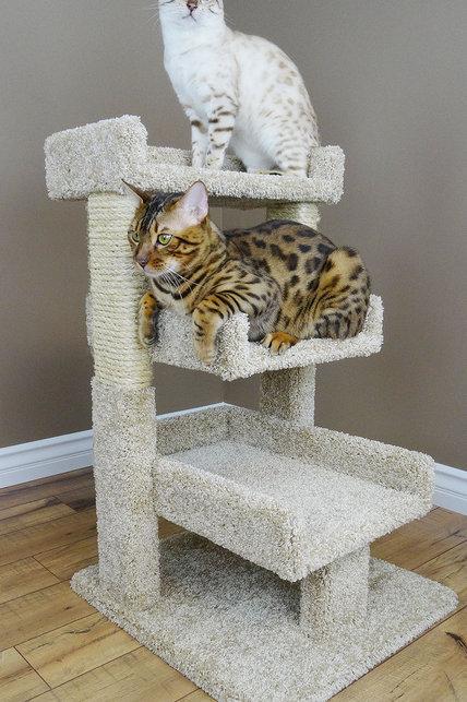 Cats Are Inn Premier Triple Cat Perch