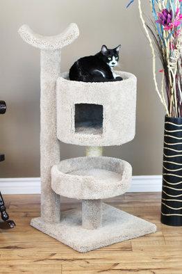 Premier Cat Bungalow Cat Tree