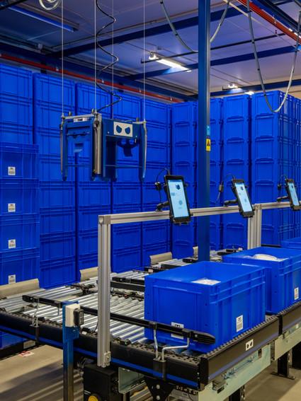 bluerobot-cody_jan2020_0037-HDR.jpg