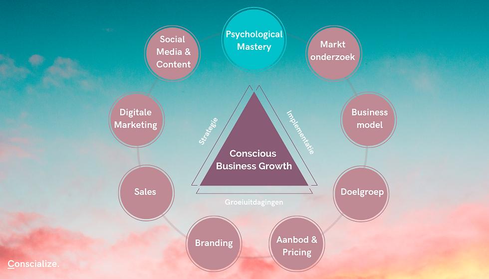Conscious Business Growth FrameWork Cons