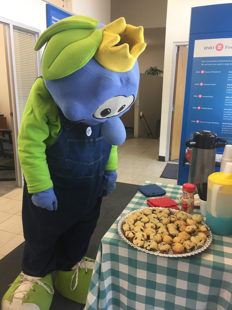 BMO Muffins with Bert!