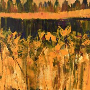 Marsh Iris