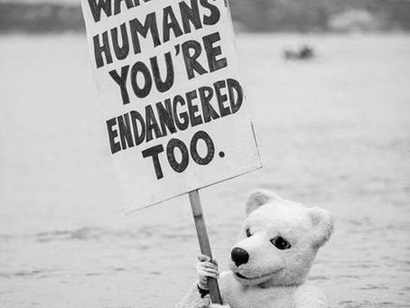 Hört auf das Klima zu schützen!