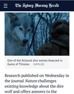 Australian DNA detectives reveal secrets of Game of Thrones wolves.