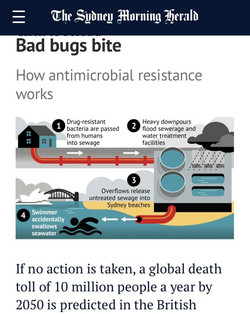 Urban beaches are environmental hotspots for antibiotic resistance.