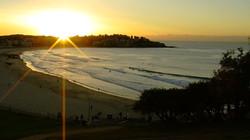 Bondi Beach Ocean Swimming