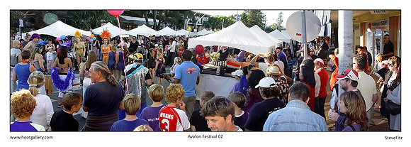 Avalon Festival 02