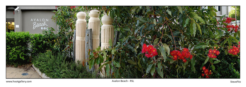 Avalon Beach RSL