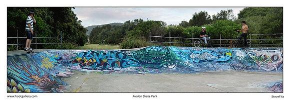 Avalon Skate Park