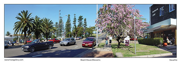 Beach House Blossoms