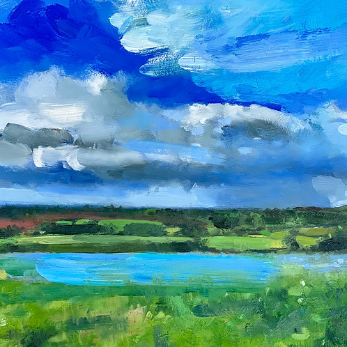 Blue Flax Fields