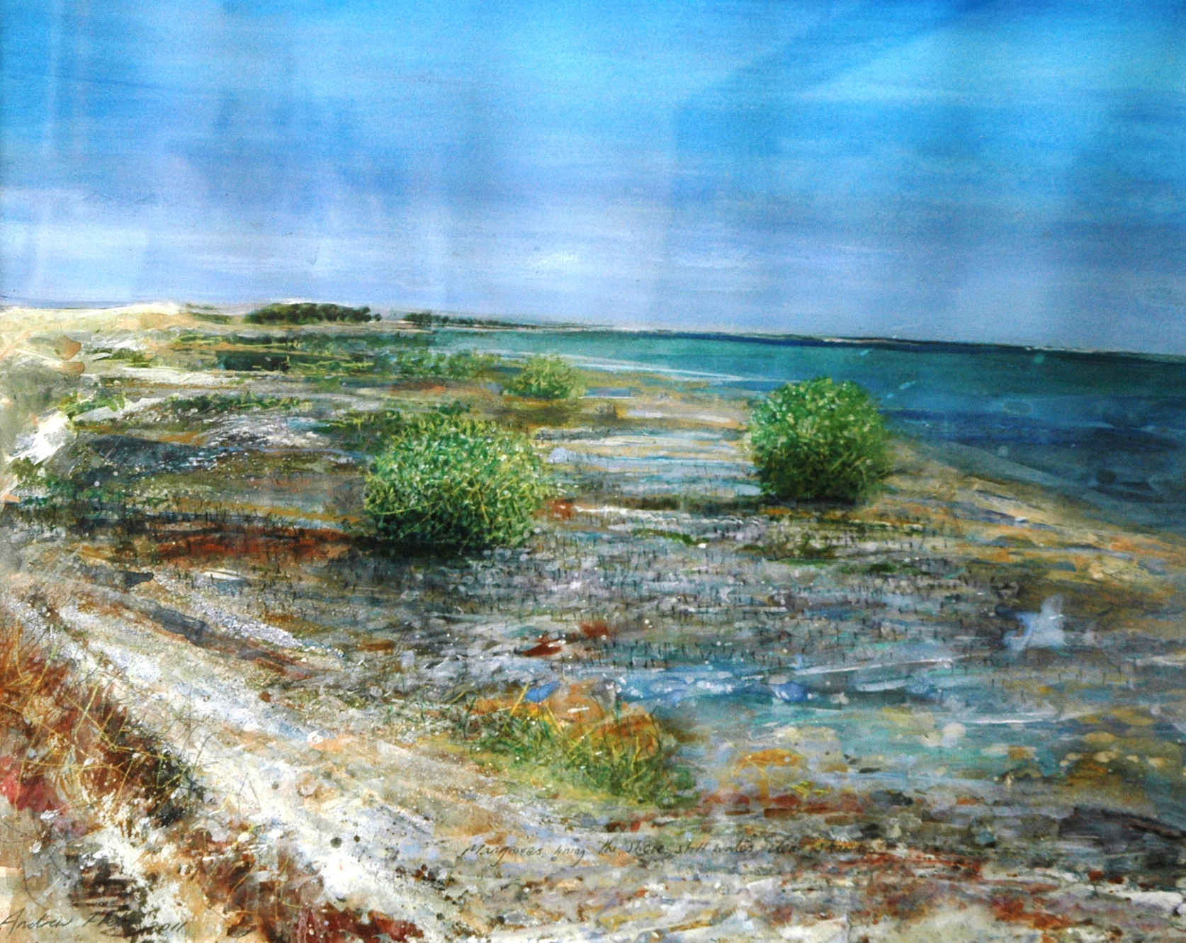 Clear Sky, Young Mangroves, 2012