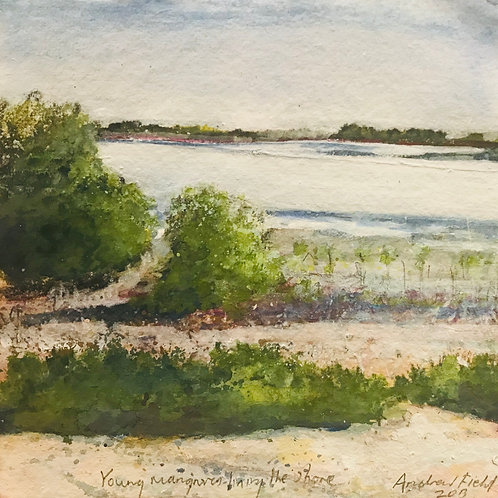 Young Mangroves Lining The Shore, mixed media on cotton rag paper, 30cm x 30cm