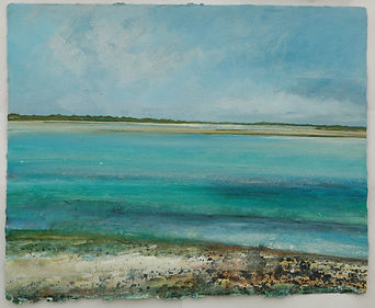 Low tide between the channel, algae and