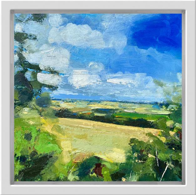 Summer Hedgerow, 30cm x 30cm, oil on alu