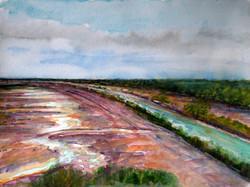 Looking Towards the Wetlands