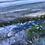 Thumbnail: Walk Along Marazion Beach 60cm x 60cm, oil on aluminium
