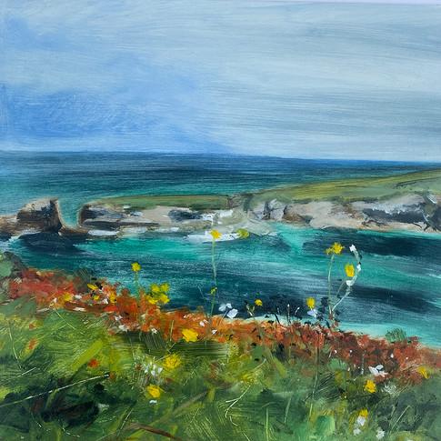 Port Gaverne, Wild Flowers, oil on aluminium,30cm x 30cm