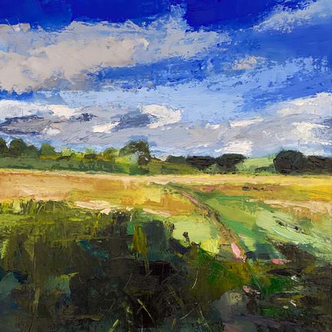 Summer Fields, oil on aluminium, 30cm x 30cm