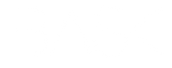 logo bask