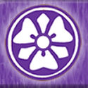 Jinen-Kan Judo Karate Club